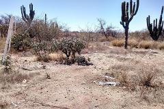 Foto de terreno comercial en venta en  , calafia, la paz, baja california sur, 0 No. 01