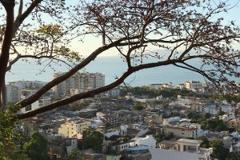 Foto de terreno habitacional en venta en calle jacarandas 602b, vista al mar, puerto vallarta, jalisco, 0 No. 01