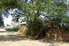 Foto de terreno habitacional en venta en camino a las gallinas , real del jericó, zamora, michoacán de ocampo, 4219118 No. 01