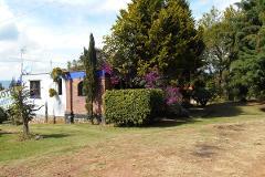 Foto de terreno habitacional en venta en camino a tepalcatepec s/n , tepalcatepec, tenancingo, méxico, 0 No. 01