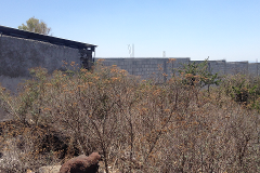 Foto de terreno habitacional en venta en camino en proyecto , san josé el alto, querétaro, querétaro, 0 No. 01