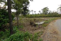 Foto de terreno habitacional en venta en camino vecinal platano y cacao 2da seccion s/n s/n , villahermosa centro, centro, tabasco, 0 No. 01