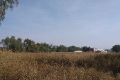 Foto de terreno habitacional en venta en camino viejo a chiconuac s/n , papalotla, papalotla, méxico, 4573190 No. 01