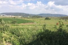 Foto de terreno habitacional en venta en  , campestre los pinos, zapopan, jalisco, 3926470 No. 01
