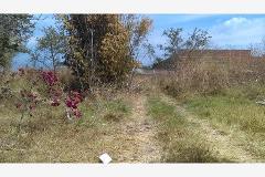 Foto de terreno habitacional en renta en carrera de caballos 1, las fuentes, jiutepec, morelos, 0 No. 01