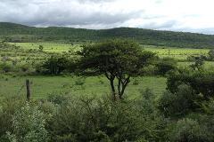 Foto de terreno habitacional en venta en carretera a huimilpan 1, las taponas, huimilpan, querétaro, 4352512 No. 01