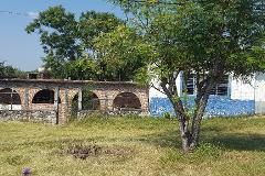 Foto de terreno habitacional en venta en carretera alpuyeca-grutas 87 , alpuyeca, xochitepec, morelos, 4035828 No. 01