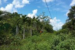 Foto de terreno comercial en venta en carretera federal cancun merida kilometro 295 + 300 , leona vicario, benito juárez, quintana roo, 4536711 No. 01