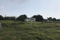 Foto de terreno habitacional en venta en carretera la piedra - antón lizardo 1, alvarado centro, alvarado, veracruz de ignacio de la llave, 3610766 No. 01