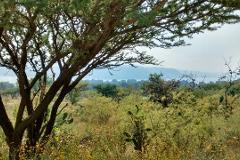 Foto de terreno habitacional en venta en carretera tepeji del rio tula amanali 0, lomas de la cantera, tepeji del río de ocampo, hidalgo, 3943052 No. 01