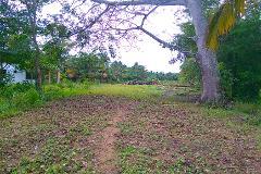 Foto de terreno habitacional en venta en  , ceiba puerto, paraíso, tabasco, 3016569 No. 01