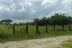 Foto de rancho en venta en  , ceiba puerto, paraíso, tabasco, 3873336 No. 01