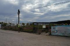 Foto de terreno comercial en venta en carretera transpeninsular *, centenario, la paz, baja california sur, 1766206 No. 01