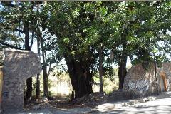 Foto de terreno comercial en venta en  , centro jiutepec, jiutepec, morelos, 3002002 No. 01
