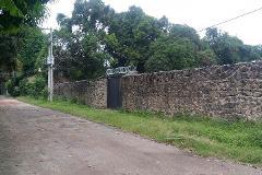 Foto de terreno habitacional en venta en  , centro, yautepec, morelos, 0 No. 01