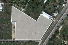 Foto de terreno habitacional en venta en  , cholul, mérida, yucatán, 4616461 No. 01