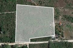 Foto de terreno habitacional en venta en  , cholul, mérida, yucatán, 4619161 No. 01