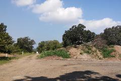 Foto de terreno habitacional en venta en  , ciudad cuauhtémoc, pueblo viejo, veracruz de ignacio de la llave, 1303047 No. 01