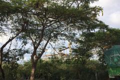 Foto de terreno comercial en venta en  , ciudad industrial, mérida, yucatán, 4409333 No. 01