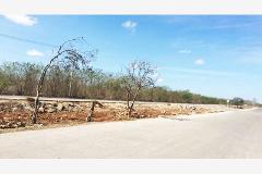 Foto de terreno comercial en venta en  , ciudad industrial, mérida, yucatán, 964865 No. 01