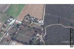 Foto de terreno habitacional en venta en  , ciudad tepeyac, zapopan, jalisco, 4610183 No. 02