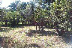 Foto de terreno habitacional en venta en coahuila 0, lindavista, pueblo viejo, veracruz de ignacio de la llave, 2647987 No. 01
