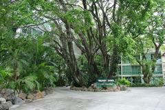 Foto de departamento en venta en colima , jacarandas, cuernavaca, morelos, 3674913 No. 01