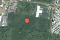 Foto de terreno comercial en venta en  , comercial fimex, altamira, tamaulipas, 3137948 No. 01