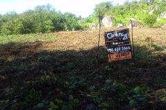 Foto de terreno habitacional en venta en comunidad hacienda vieja sin numero , santa maria huatulco centro, santa maría huatulco, oaxaca, 4558380 No. 01