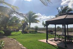 Foto de terreno habitacional en venta en  , conkal, conkal, yucatán, 4616030 No. 01