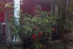 Foto de terreno habitacional en venta en  , conkal, conkal, yucatán, 4640189 No. 01