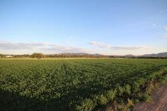 Foto de terreno comercial en venta en  , corral de piedras de arriba, san miguel de allende, guanajuato, 3058036 No. 01