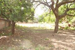 Foto de terreno habitacional en venta en cuajilote 32, santiago, yautepec, morelos, 3958814 No. 01