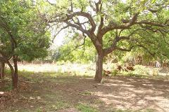 Foto de terreno habitacional en venta en cuajilote 32, santiago, yautepec, morelos, 4199851 No. 01