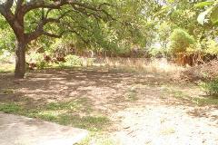 Foto de terreno habitacional en venta en cuajilote 32, santiago, yautepec, morelos, 4455164 No. 01