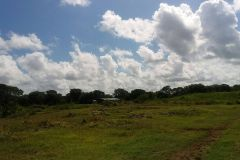 Foto de terreno habitacional en venta en Izamal, Izamal, Yucatán, 4393541,  no 01