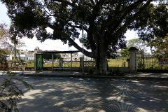 Foto de terreno comercial en venta en  , del norte, mérida, yucatán, 0 No. 01