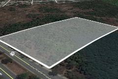 Foto de terreno habitacional en venta en  , del sur, mérida, yucatán, 0 No. 01