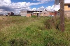 Foto de terreno habitacional en venta en boxeo , deportiva, zinacantepec, méxico, 2717003 No. 01