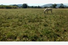Foto de terreno habitacional en venta en  , diego ruiz, yautepec, morelos, 4251773 No. 01