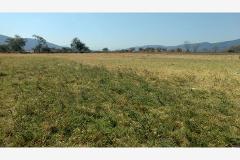 Foto de terreno habitacional en venta en  , diego ruiz, yautepec, morelos, 4252192 No. 01