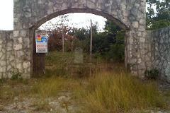 Foto de terreno habitacional en venta en doctores , alfredo v bonfil, benito juárez, quintana roo, 4538033 No. 01