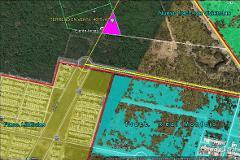 Foto de terreno comercial en venta en  , dzitya, mérida, yucatán, 0 No. 02