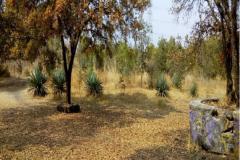 Foto de terreno habitacional en venta en Tlalpan, Tlalpan, Distrito Federal, 5273762,  no 01