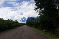 Foto de terreno habitacional en venta en Tamanché, Mérida, Yucatán, 4239305,  no 01