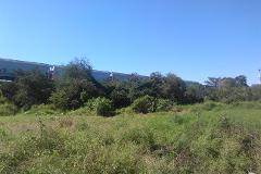 Foto de terreno habitacional en venta en tlatenalgo 0, altamira centro, altamira, tamaulipas, 2647880 No. 01