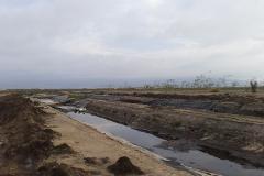 Foto de terreno comercial en venta en ejido nacionalista de sánchez taboada 0, maneadero, ensenada, baja california, 2124361 No. 01