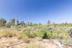 Foto de terreno habitacional en venta en  , el pescadero, la paz, baja california sur, 4615791 No. 01