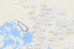 Foto de terreno comercial en venta en  , el repecho, altamira, tamaulipas, 0 No. 01