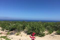 Foto de terreno habitacional en venta en  , el sargento, la paz, baja california sur, 3884317 No. 01